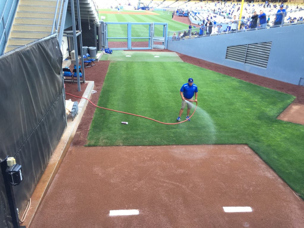 Dodger Groundskeeper